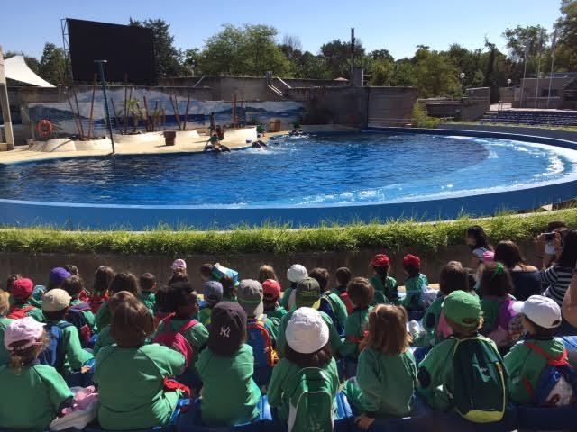 Visita al Zoo de Madrid – Infantil (2.10.2015)